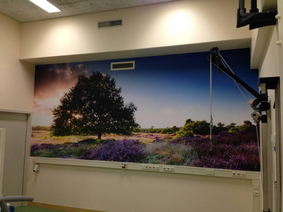 PreGo behang Wilhelmina Ziekenhuis Assen